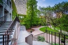 台阶和大厦在怀雅逊大学,在多伦多,安大略 免版税图库摄影