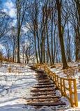 台阶在冬天 库存照片