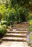 台阶在庭院里。 免版税库存图片
