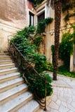 台阶在房子里在欧洲城市,长满与灌木和叶子 库存照片