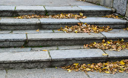 台阶在秋天的城市公园 图库摄影