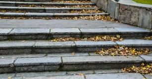 台阶在秋天的城市公园 库存照片