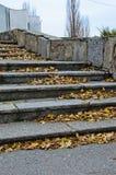 台阶在秋天的城市公园 库存图片