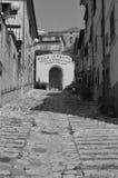 台阶在费拉约港,厄尔巴岛的老市中心 图库摄影