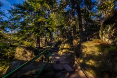 台阶在Szczeliniec的Wielki在国立公园Stolowe山,Sudety,波兰绿色森林里 免版税库存图片
