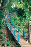 台阶开始在老虎洞寺庙上面的 第1237步对 免版税图库摄影