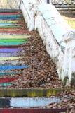 台阶用下落的叶子盖 免版税库存图片