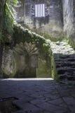 台阶的废墟 图库摄影