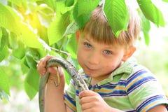 台阶的快乐和快乐的男孩在庭院里吃在树的一棵樱桃树 免版税库存图片