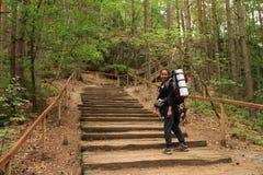 台阶的游人在道路在森林里 库存图片