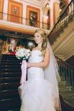 台阶的美丽的新娘 库存照片