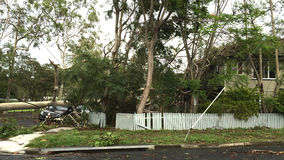 台风或风暴的后果 免版税图库摄影