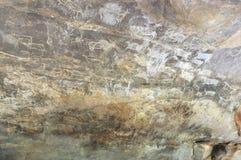 史前石洞壁画在Bhimbetka -印度。 免版税图库摄影