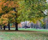 史密斯公园,罗阿诺克,弗吉尼亚,美国秋天视图  免版税图库摄影