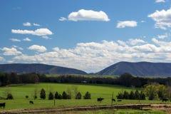 史密斯山Huddleston,弗吉尼亚,美国 免版税库存照片