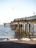 史泰登岛海岸线 免版税库存照片