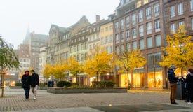 史特拉斯堡与黄色叶子的秋天树 库存照片