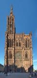 史特拉斯堡大教堂,法国 库存照片