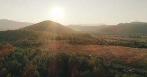 史诗鸟瞰图:薄雾Forrest日落五颜六色的秋天树金黄小时日落上色史诗荣耀启发 股票视频