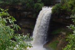 绿叶和瀑布 库存图片