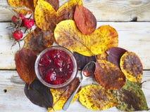 叶子、果酱和野玫瑰果 图库摄影
