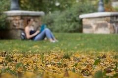 叶子、秋天和校园生活 库存照片