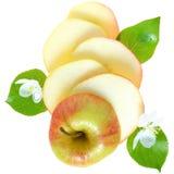 叶子、花和苹果切片隔绝了顶视图 免版税库存图片