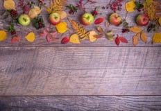 叶子、苹果和莓果的秋天安排在木背景与自由空间文本的 顶视图,概念  库存图片