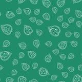 叶子仿造无缝 绿色和空白颜色 墙纸的,纺织品手拉的背景 也corel凹道例证向量 免版税库存图片