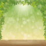 叶子和太阳光芒 皇族释放例证
