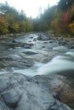 叶子和快速河急流,新罕布什尔垂直的看法  免版税库存照片