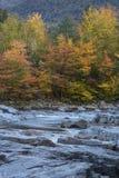 叶子和快速河急流,新罕布什尔垂直的看法  库存图片