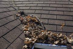 叶子和棍子在屋顶谷 免版税库存照片