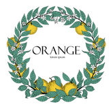 叶子和橙色果子圆的花圈  传染媒介手拉的框架剪影样式 鸟逗人喜爱的例证集合葡萄酒 商标模板 免版税库存照片
