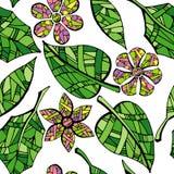叶子和花的汇集在白色背景 库存图片