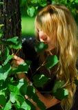 叶子嗅到的妇女 免版税库存图片