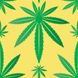叶子大麻无缝的瓦片 库存图片
