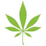 叶子大麻 库存照片