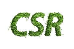 叶子字母表信件  叶子在白色backg隔绝的信件CSR 库存照片