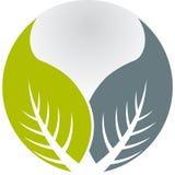 叶子徽标 免版税图库摄影