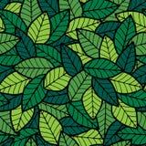 叶子无缝的样式春天 免版税库存照片