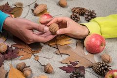 叶子时尚销售的下降时间 为文本准备 黑星期五的销售 秋天设计和装饰 秋天背景与 库存照片