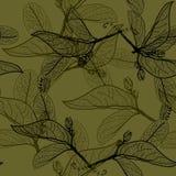 叶子染黑在黑暗的橄榄色的黑暗的卡其色的绿色背景的等高 向量例证