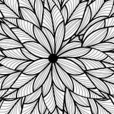 叶子样式 图库摄影