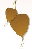 叶子槭树 皇族释放例证