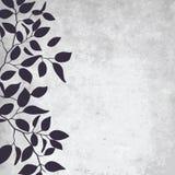 叶子模式 免版税图库摄影