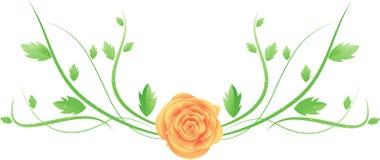叶子玫瑰漩涡向量 皇族释放例证