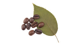 叶子用咖啡豆 免版税库存图片