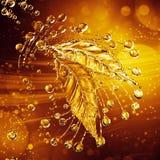 叶子由水飞溅制成 金子颜色 图库摄影