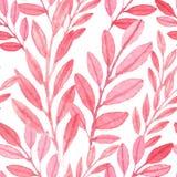 叶子的无缝的传染媒介桃红色样式 库存照片